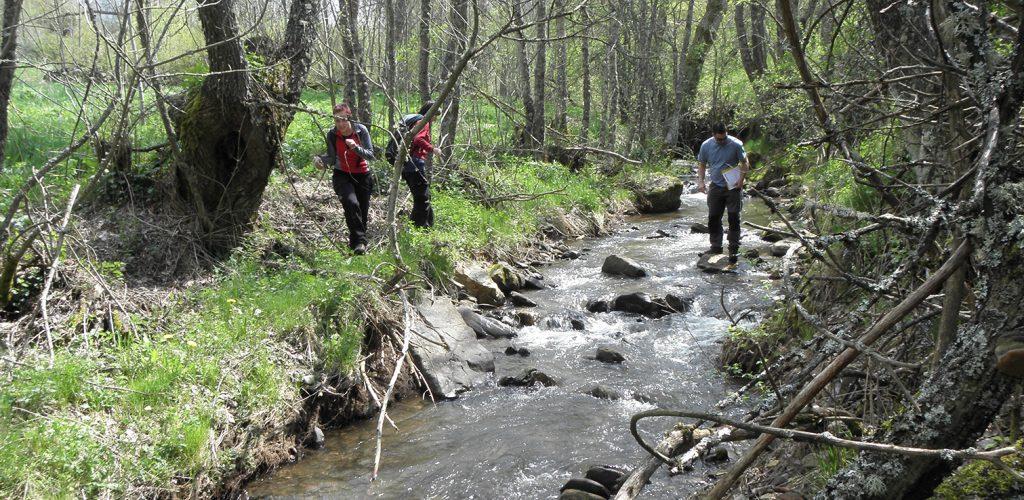 red-ambiente-cuidado-medioambiental