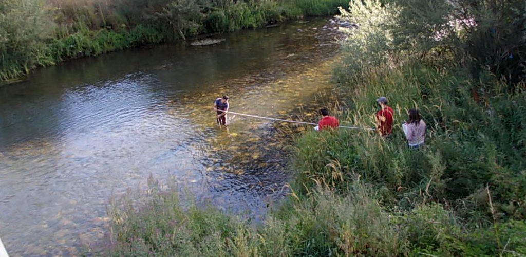 red-ambiente-rio-estudio-medioambiental