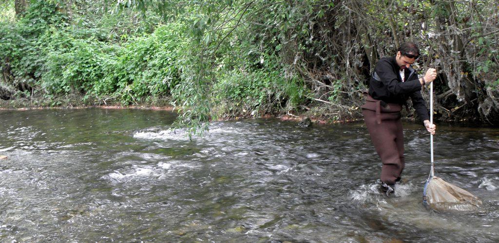 red-ambiente-rio-movil-estudios