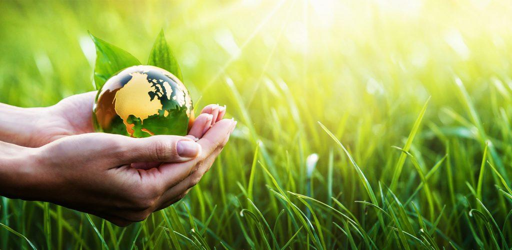 Política Ambiental Red Ambiente